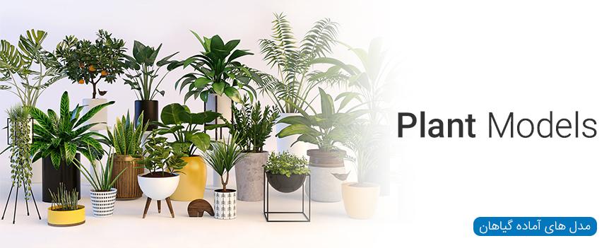 مدل های آماده گیاهان